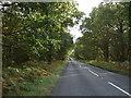 TF6822 : Lynn Road, Roydon Common by JThomas