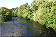 NY9923 : River Tees by Russel Wills
