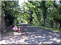 SJ3479 : Benty Heath Lane by Jeff Buck