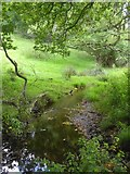 SK2477 : Stream by Horse Hay Coppice by David Smith