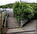 SS9993 : Steps up to Llwynypia Road,  Llwynypia by Jaggery