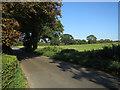 TG1216 : Marl Hill Road by Hugh Venables