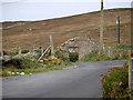 C4059 : Derelict Cottage at Ballyhillin by David Dixon