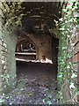 SN5005 : Inside the kiln at former Horeb Brickworks by Nigel Davies