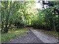 TQ4726 : Oldlands Hill by PAUL FARMER