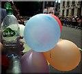 TQ3080 : London Pride by Nigel Palmer