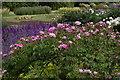 TL5238 : Audley End: Parterre Garden by Christopher Hilton