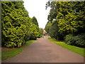 SO9099 : West Park, Wolverhampton (7) by Richard Vince