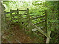 ST6562 : Between Roundhill and Common Wood by Neil Owen