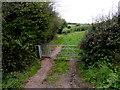 SO3617 : Offa's Dyke Path, Caggle Street near Llanvetherine by Jaggery