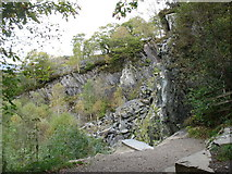 NY2516 : Quayfoot Quarry by David Purchase