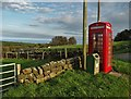 SE9998 : Telephone kiosk at Staintondale : Week 41