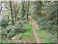SH6340 : Footpath Junction by Keith Evans