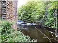 SJ9687 : River Goyt below the weir by Gerald England