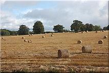 NJ5429 : Harvested field by Bill Harrison
