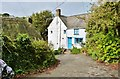 SW7214 : Nameless lane off Barn Hill, Cadgwith, Cornwall by Derek Voller