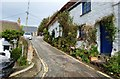 SW7214 : Cottages on Barn Hill, Cadgwith , Cornwall by Derek Voller