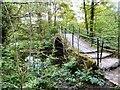 SJ9687 : Windy Bottom (aka Roman) Bridge by Gerald England