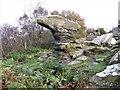 SE2064 : The Anvil, Brimham Rocks by G Laird