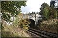 NJ5429 : Elegant bridge by Bill Harrison