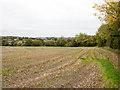 TL7951 : Edge of stubble field near Thurston Hall by Trevor Littlewood