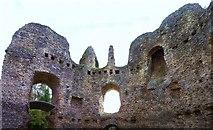 SU7251 : Odiham Castle ruins by Len Williams