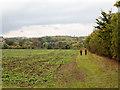 TL7653 : Walkers descending along field headland by Trevor Littlewood