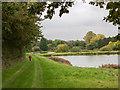 TL7854 : Path beside ponds by Trevor Littlewood