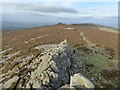 SO3698 : Looking north up the Stiperstones ridge from Manstone Rock by Jeremy Bolwell