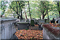 TQ3282 : An autumn view of the graves in Bunhill Fields by Chris Reynolds