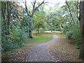 SJ7661 : Path in Sandbach Park by Stephen Craven