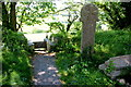 SX1291 : Wayside Cross in St Juliots Churchyard by Nigel Mykura