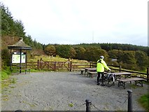 N7296 : Picnic area at Loughanleagh by Oliver Dixon
