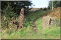 SO1703 : Southern entrance to Coed y Llanerch, USVCW by M J Roscoe