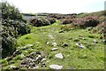 SW8019 : Stepping stones across some of the boggier part of the Sw Coast Path at Lowland Point, Cornwall by Derek Voller