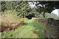 SO1703 : Footpath into the edge of Coed y Llanerch by M J Roscoe