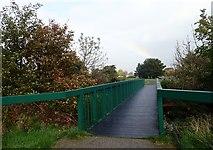J3731 : Footbridge over the Shimna in Island Park, Newcastle by Eric Jones