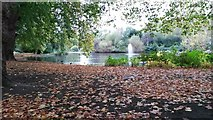 TQ2979 : Autumn  morning, St James's Park by David Martin