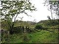 NZ0857 : Footpaths junction by Robert Graham