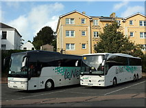 SX9164 : French coaches, Torquay coach station by Derek Harper