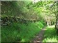 SJ0742 : Footpath down to Corwen by Stephen Craven