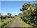 TG0906 : Low Road, Carleton Forehoe near Glebe Farm by Adrian S Pye