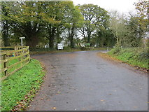 R7723 : Local Road L1577 joining Regional Road R513 on the outskirts of Ballylanders by Peter Wood