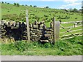 SD8240 : A stile on a footpath by Steve Daniels