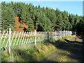NJ0216 : Deer fencing around enclosure by Trevor Littlewood