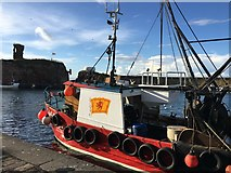 NT6779 : Zephyr at the Harbour in Dunbar by Jennifer Petrie