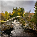NH9022 : Old Bridge at Carrbridge : Week 43