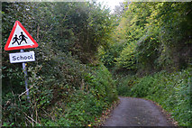 SY1988 : East Devon : Northern Lane by Lewis Clarke