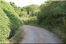 SU8495 : Road, Downley Common by N Chadwick