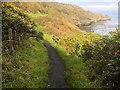 NZ8512 : Cleveland Way Cliff Path near Sandsend by David Dixon